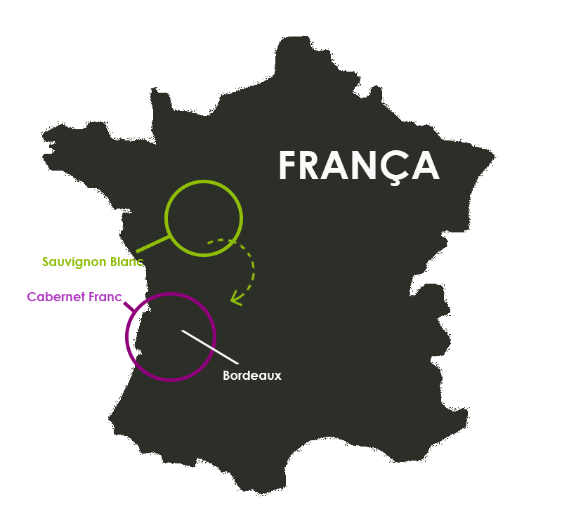 france-map-source_3a7
